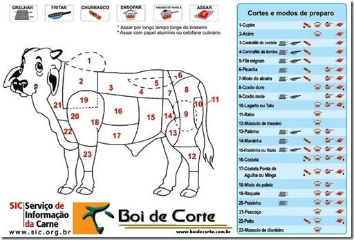 cortes_do_boi1