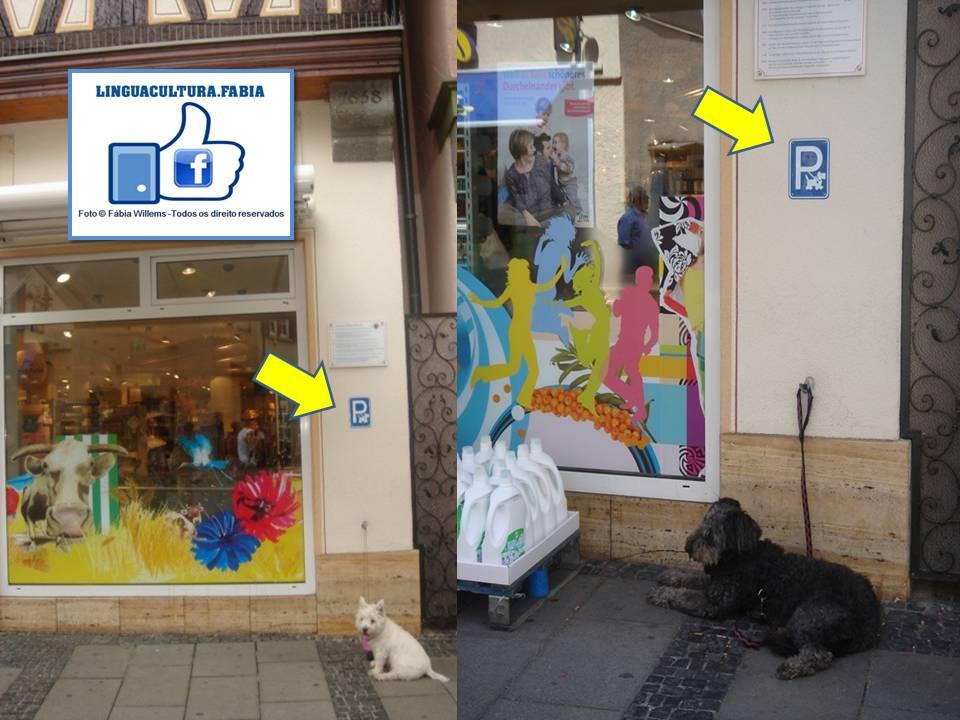 dm_dogparking3