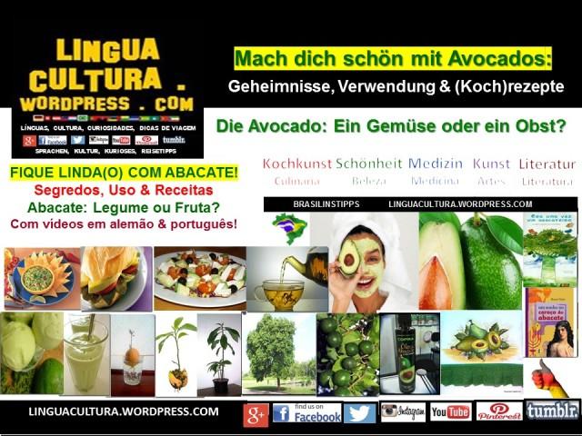 avocado_blog