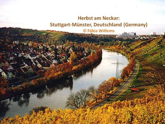 herbst_stgt_münster1a