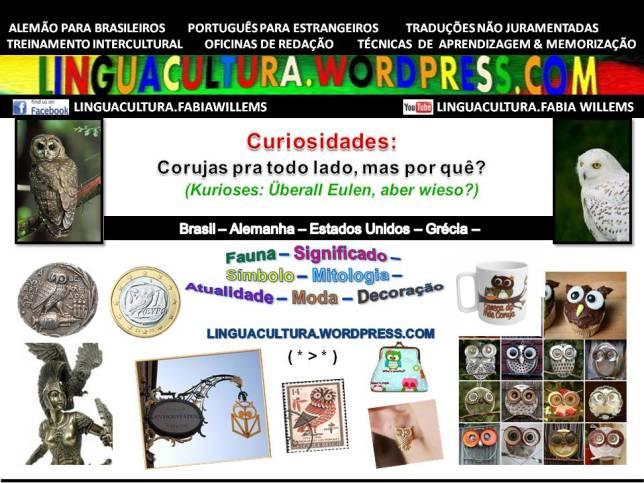 curiosidade_coruja1a
