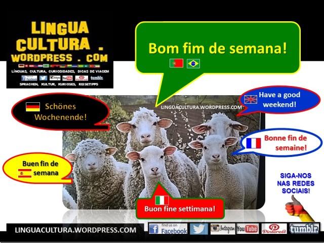 bomfimsenama_div_linguas1aa